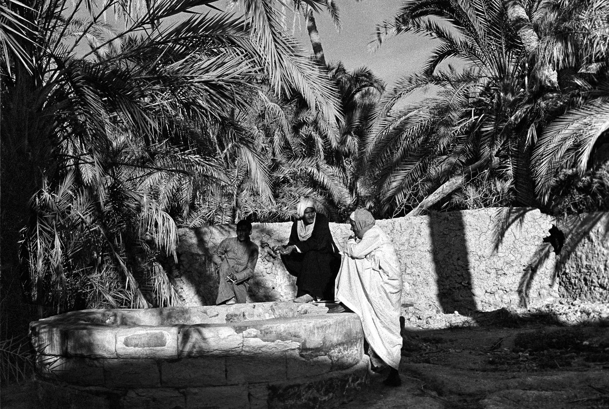 Sèrie: Els Oasis d'Egipte. Conversa a un hort de Farafra. Oasis d'Egipte. 1982.