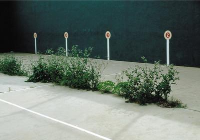 Sport places#011