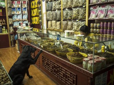 Farmàcia de Medicina Tibetana a Yunnan (Xina)