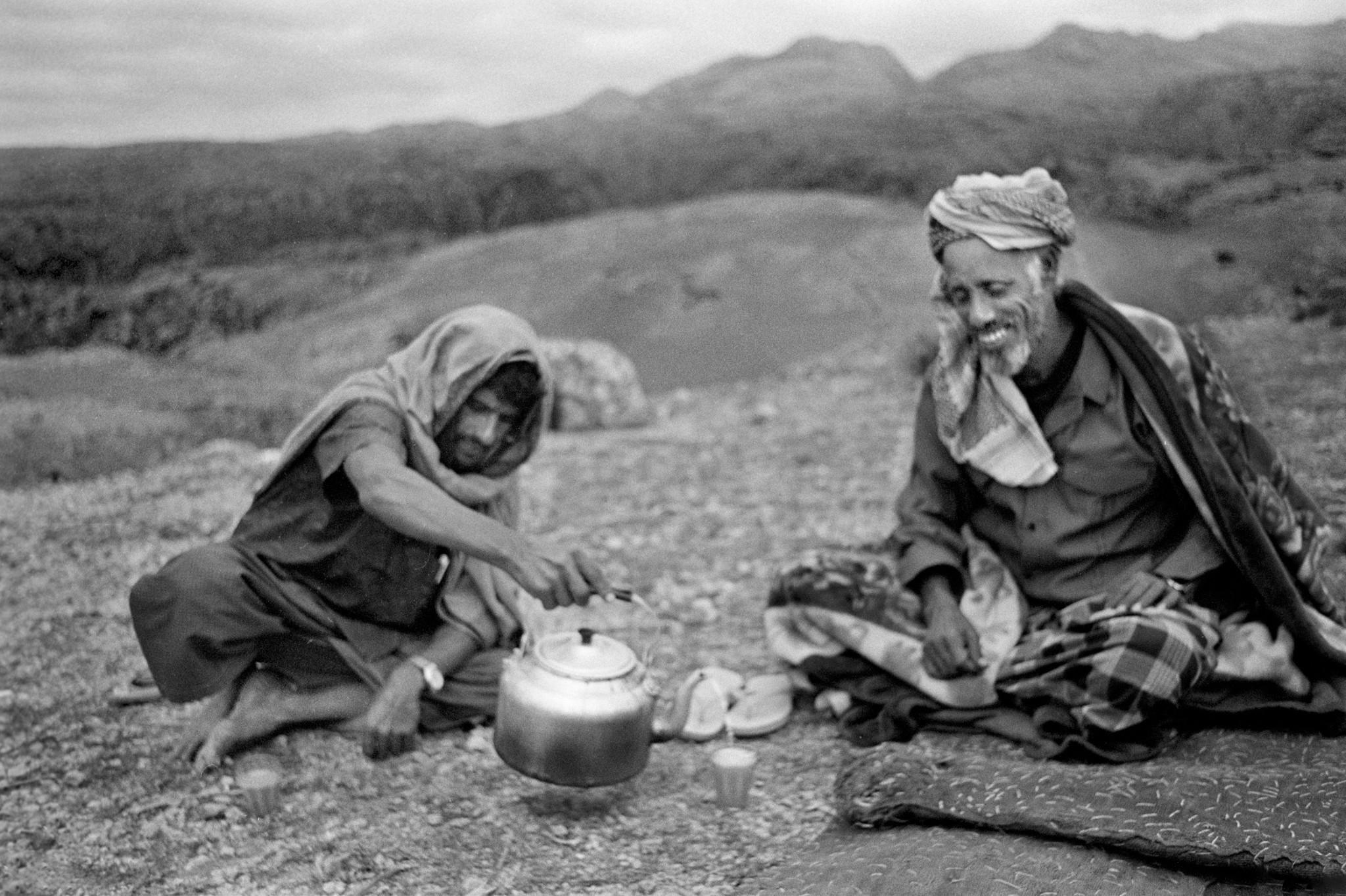Sèrie: Socotra, l'illa dels genis. Descans