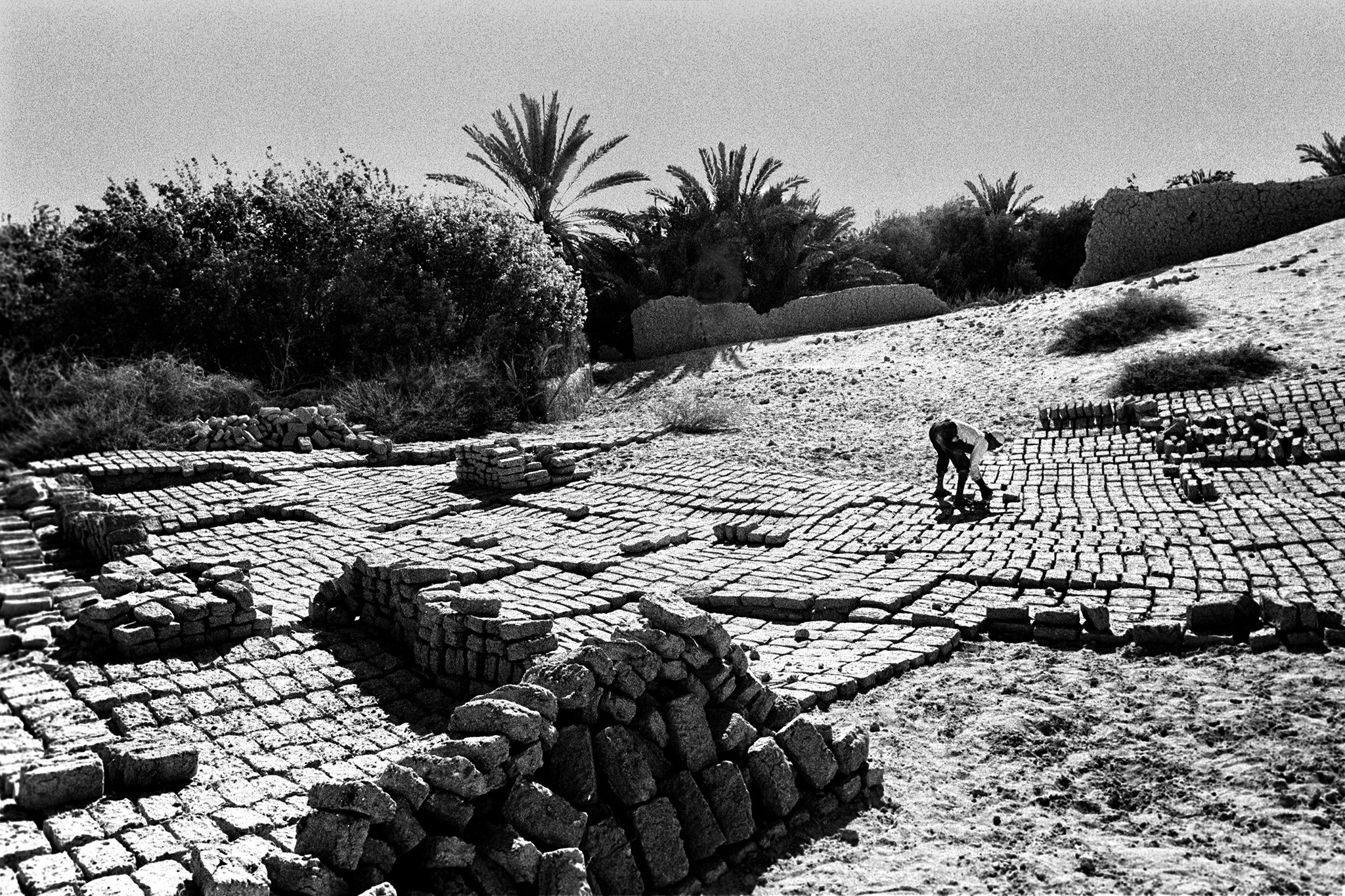 Sèrie: Els Oasis d'Egipte. Fent maons d'adob. Farafra. Oasis d'Egipte. 1984.