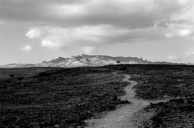 Sèrie: Socotra, l'illa dels genis. Cap a les muntanyes de al Haghier