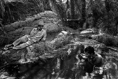 Sèrie: Els Oasis d'Egipte. Font d'aigües calentes. Al Kharga 1984 Oasis d'Egipte.