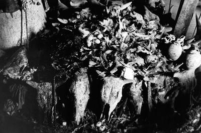 Sèrie: Viatge al país de les ànimes. El fetitxe Mansé, de Kekerenie, recobert per les restes de antics sacrificis. Costa d'Ivori 1998.