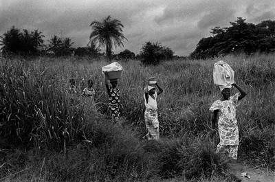 Sèrie: Viatge al país de les ànimes. Caminant cap el bosc sagrat d'Aniansue.  Costa d'Ivori 1998.