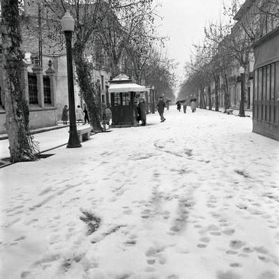 Rambla Principal nevada