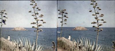 Camí de la mar Petita amb la Lola al fons a Tossa de Mar