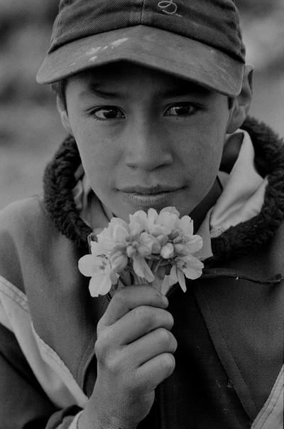 """La flor. Col·lecció """"Guatemala"""""""