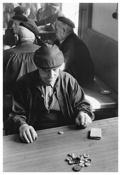 Avis jugant a cartes