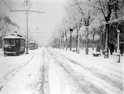 Circulació de tramvies per un carrer nevat a Barcelona